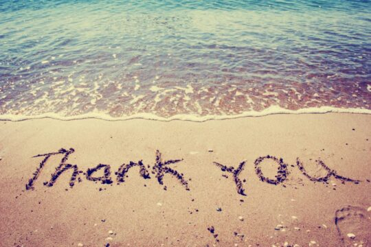 Cultivate Gratitude Thankfulness