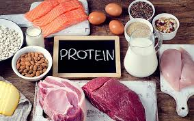 Altenative Meal For Whey Protein